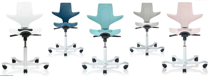 http://www.jbl.co.uk/office-furniture/seating/ergonomic/hag-capisco-puls/